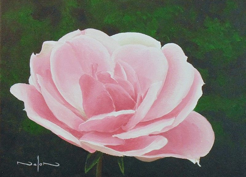 How to paint a rose in acrylic share today 39 s craft and for How to paint a rose watercolor
