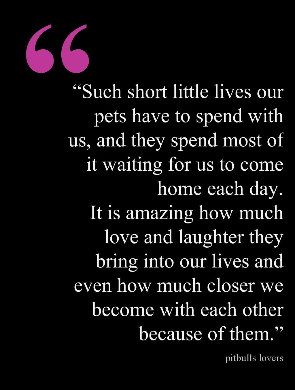 Quote By John Grogan Marley And Me Life And Love With The Worlds