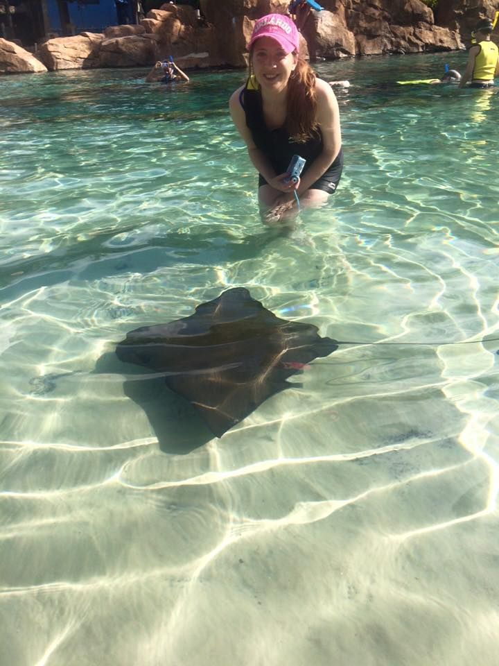 Grand Reef Discovery Cove