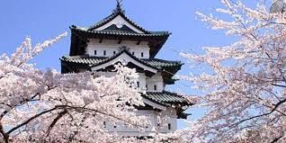Image result for pale japanese cherry blossom