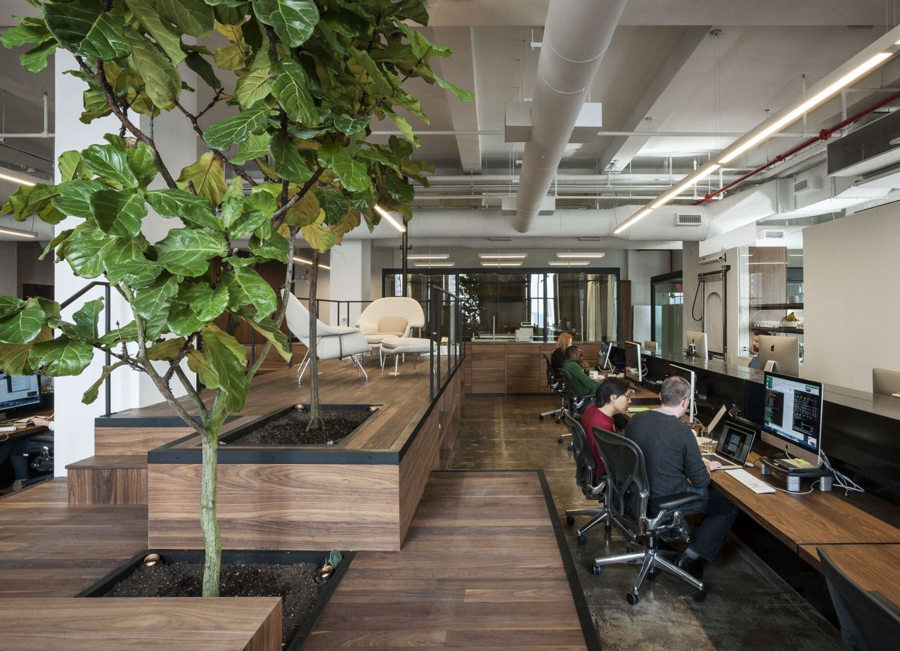 FiftyThree office by +ADD, New York City office healthcare