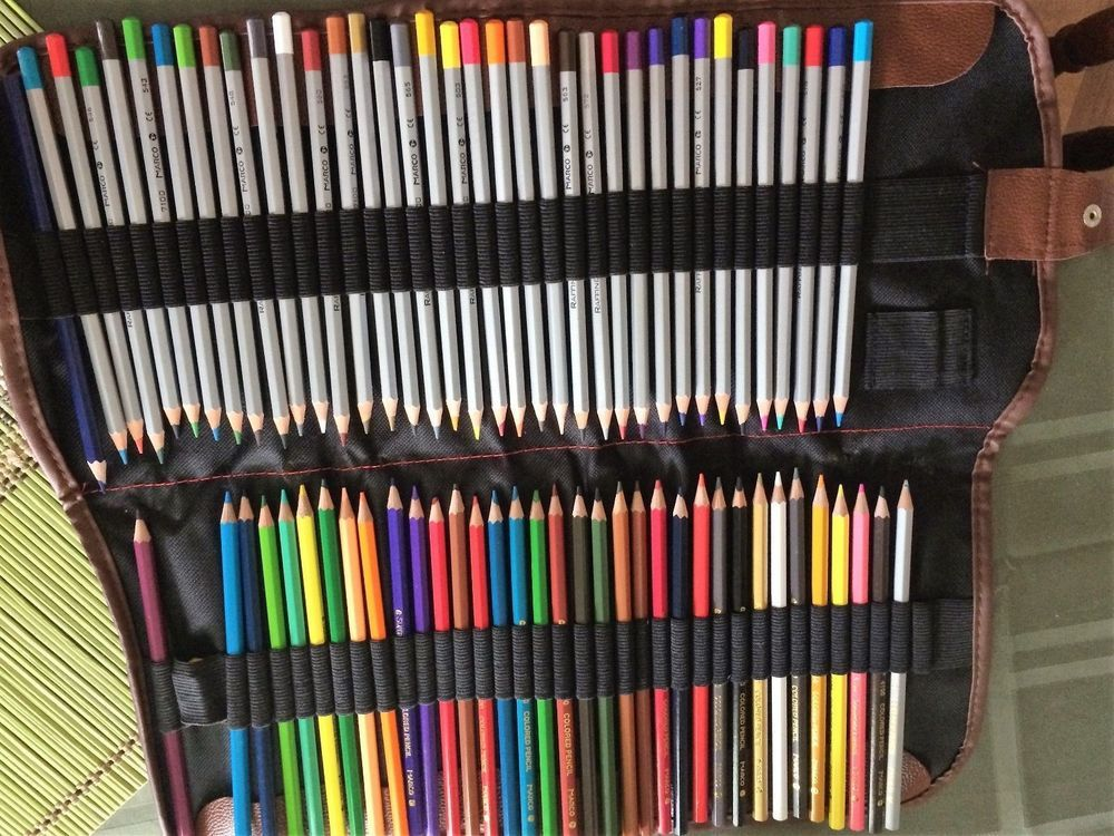Pencil Case 72 Color Pencil Holder Organizer W Art Colored Pencils