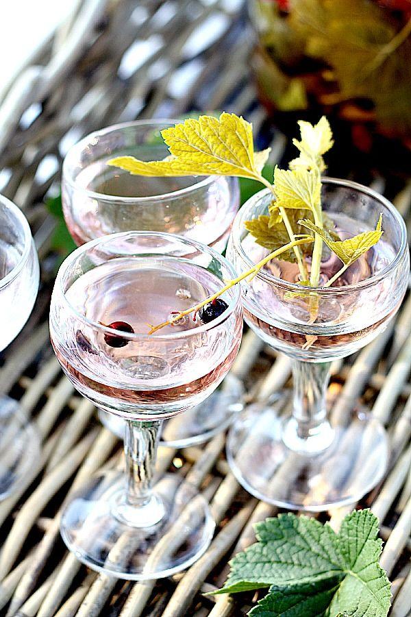 Les Cuisines de Garance: Vin de feuilles de cassis pour vos apéritifs d'été...