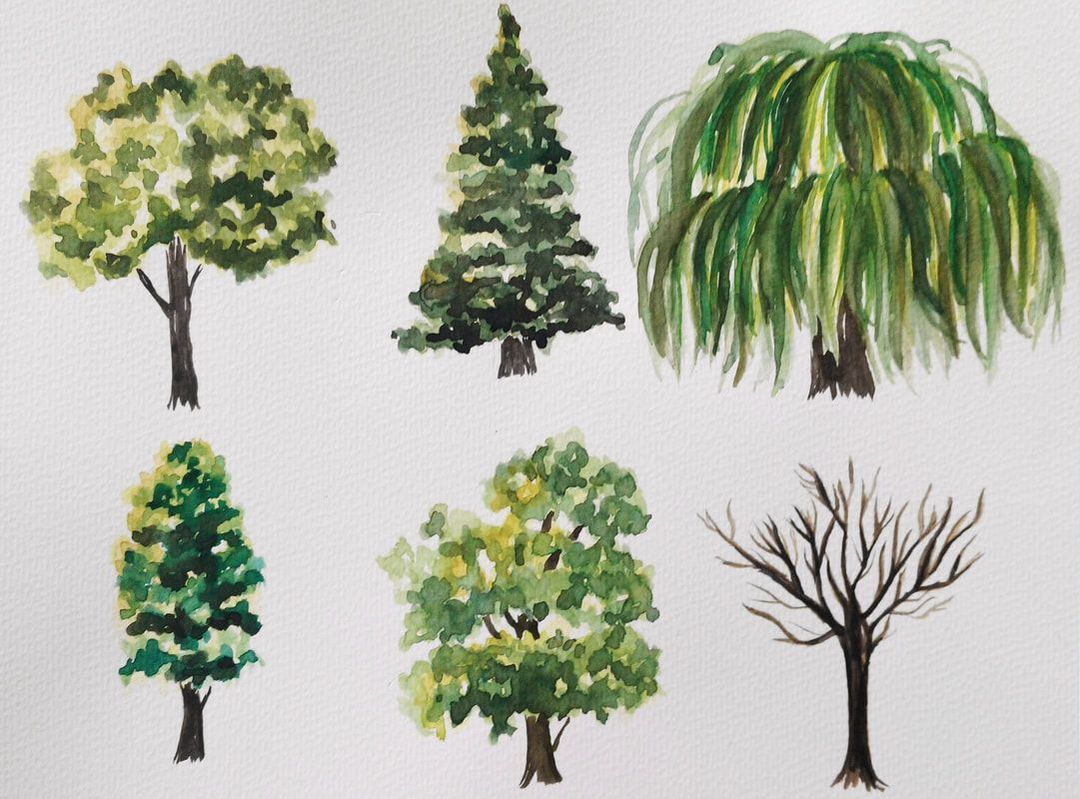 Set Of Green Trees And Bushes Download From Over 64 Million