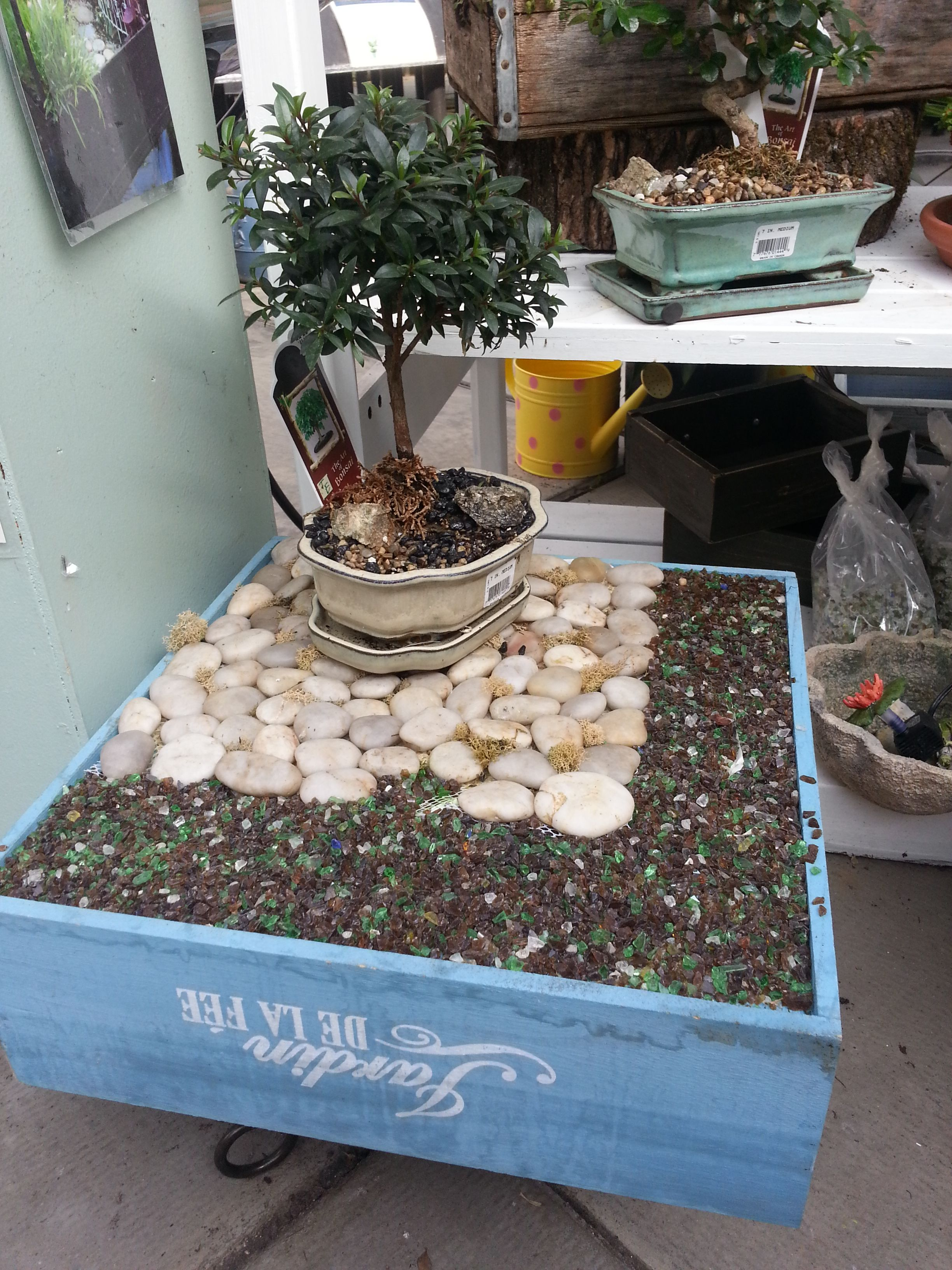 Beautiful A Zen Rock Fairy Garden From Stauffers Of Kissel Hill Garden Centers. Www. Skh.com Awesome Ideas