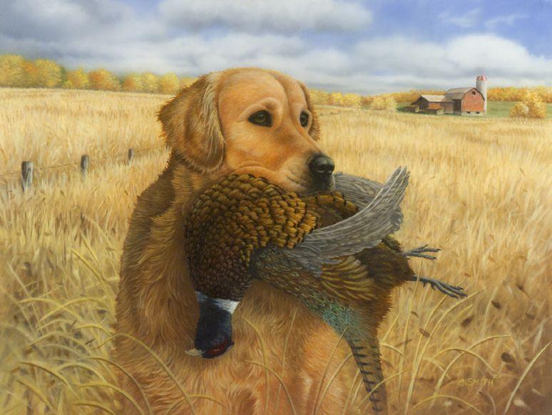 Antler Ridge Lodge Pc Pheasant And Turkey Hunting Wallpapers