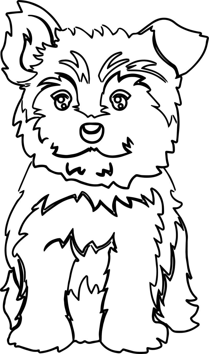 Yorkie Puppy Color Dog Puppy Coloring Page Puppy Coloring Pages Dog Coloring Page Love Coloring Pages