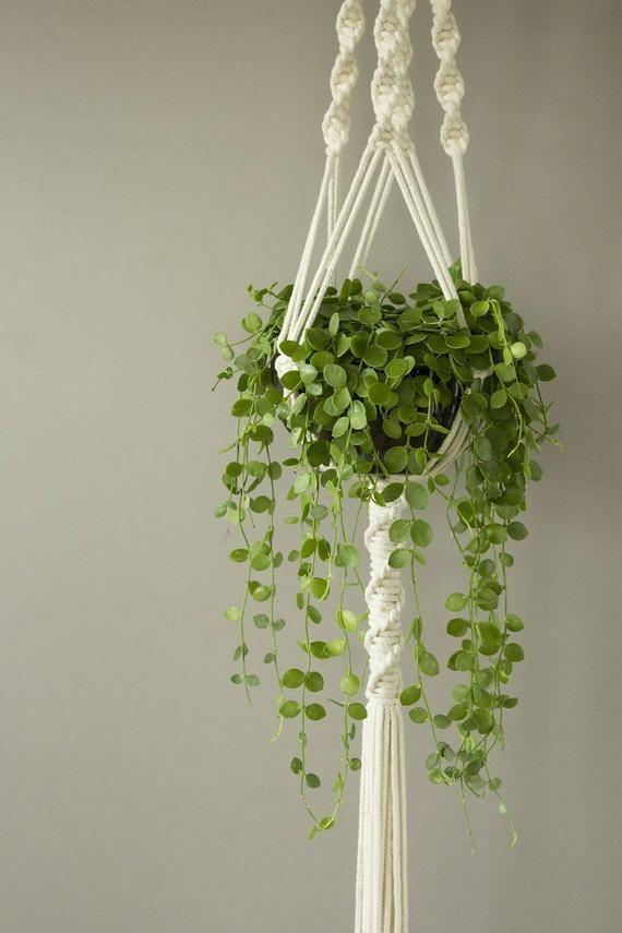 Gardening Gift Hanging Planter White Macrame Plant