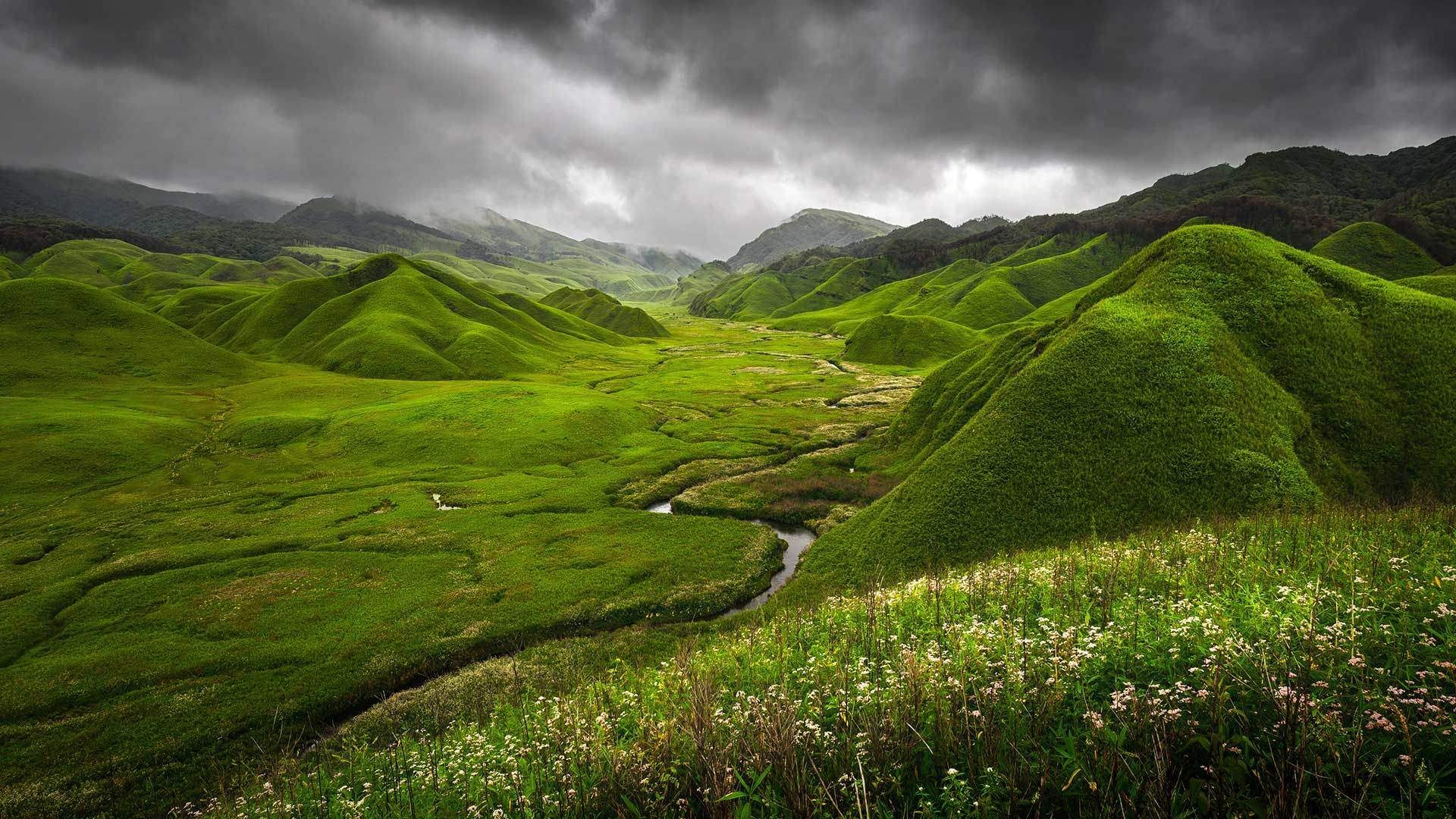 The Rolling Hills Are Draped With The Most Lush Green Grass Grass Wallpaper Scenery Wallpaper Grasses Landscaping