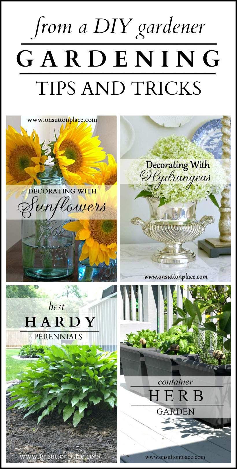 Gardening Tips And Tricks From A Diy Gardener Garden 400 x 300