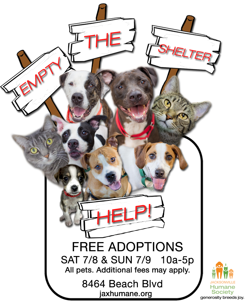 Jacksonville Humane Society Empty The Shelters Adoption