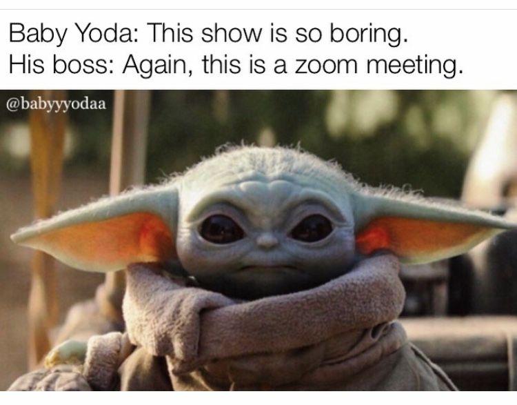 Baby Yoda Meeting Zoom Yoda Funny Yoda Meme Stupid Funny Memes