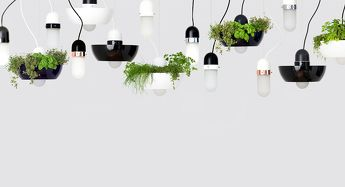 Suspension Well Light Planter Black - Object/Interface - Image 7