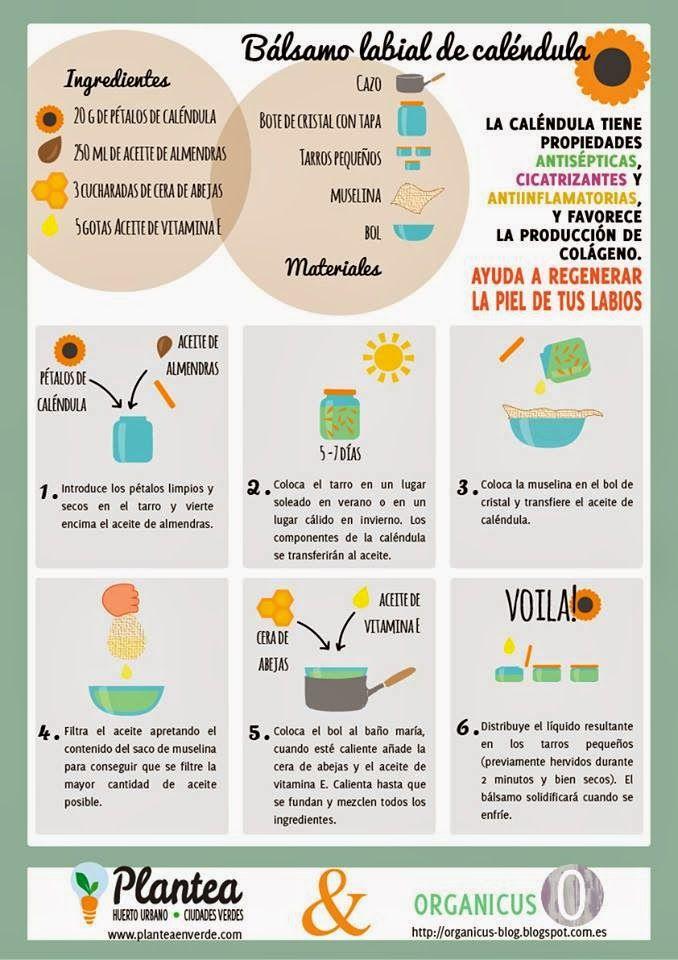 Organicus Colaboración Con Plantea Bálsamo Labial De Caléndula Infografía Cosmetica Natural Casera Balsamo Labial Cosmeticos Naturales