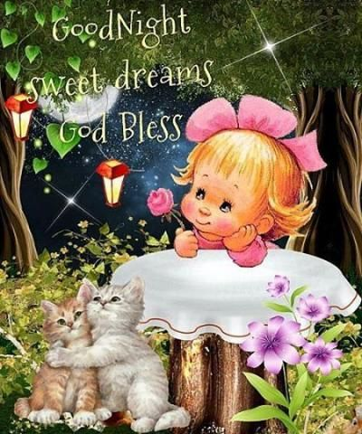 Meet People Like Just Judy Whoknows A A A A A A On Meetme Good Night Prayer Good Night Blessings Good Night Sweet Dreams