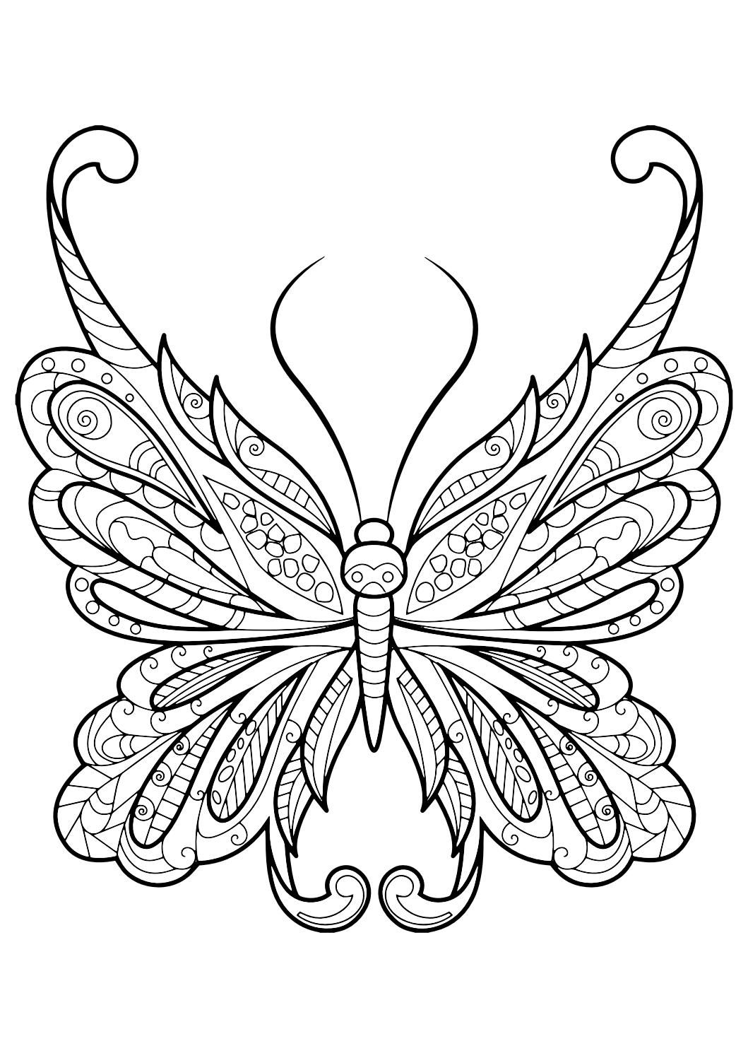 Adult butterfly coloring book easy christmas crafts for Coloring pages of butterflies for adults