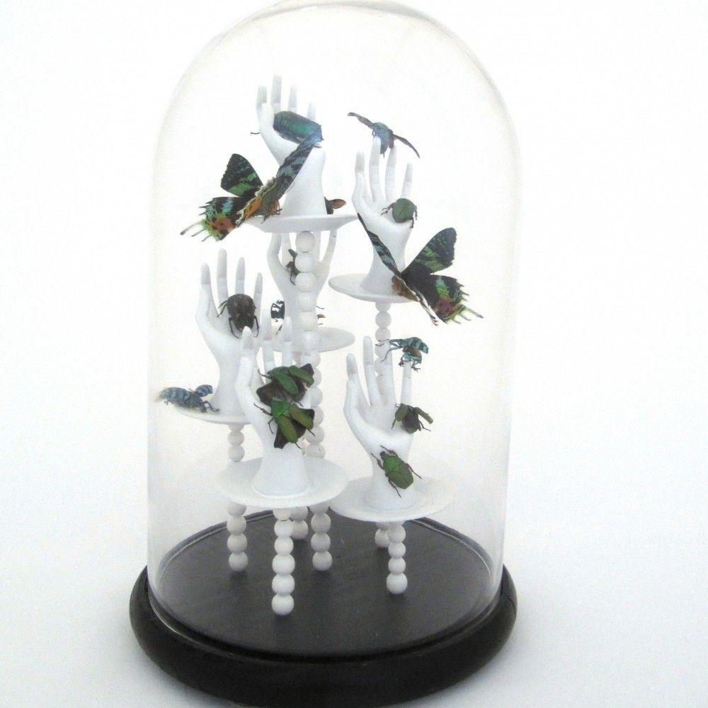 Moderne stolp met Urania Rpheus vlinders en Kevers