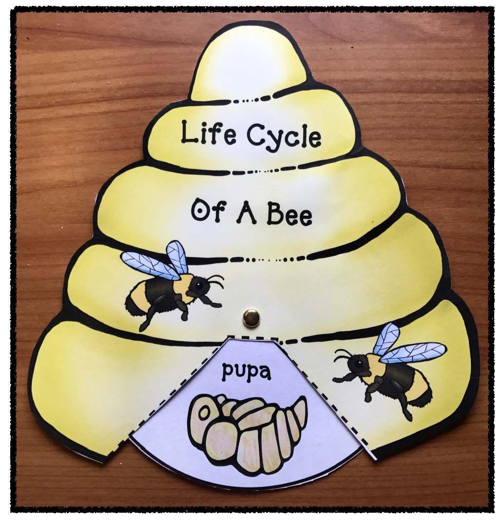 16++ Bee craft for preschoolers ideas