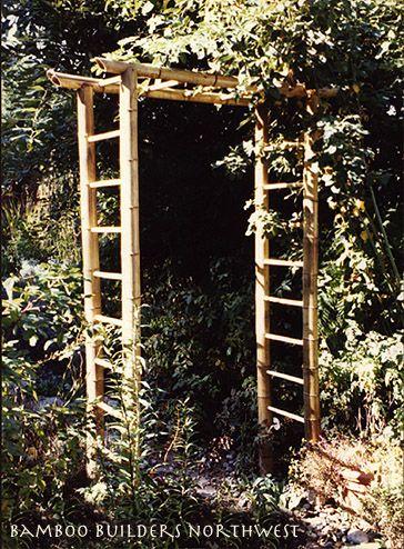 Bamboo Builders Northwest Branch Top