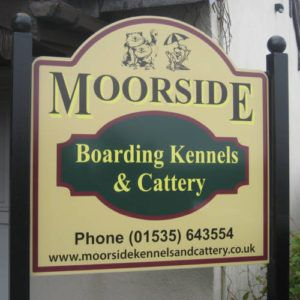 Moorside Kennels and Cattery Cattery, Kennel, Dog