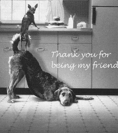 Anonymous Art Of Revolution Thank You For Being My Friend Pets Dogs Funny Animals