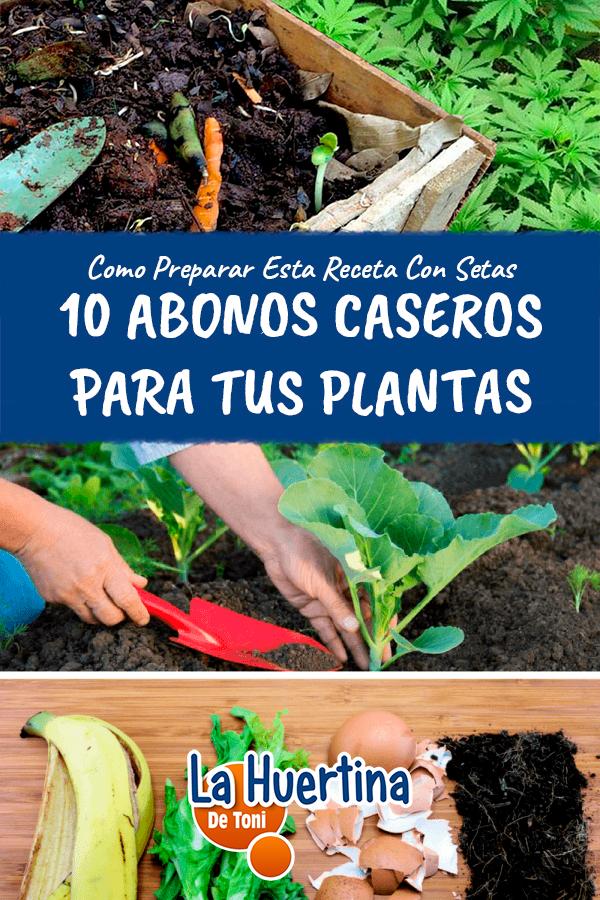 10 Abonos Ecologicos Que Podemos Hacer En Casa La Huertina De Toni Garden Compost Compost Plants