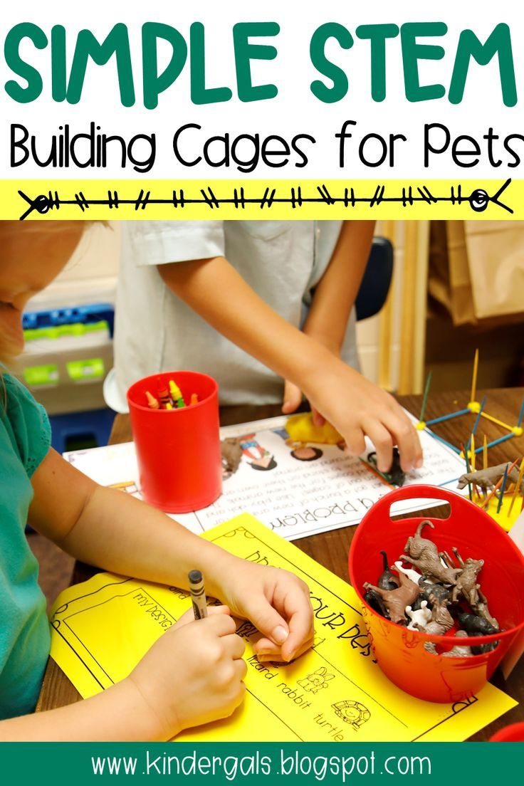 Create STEM challenges that are easy in the classroom! Set up this STEM Activity in your Pet Store Dramatic Play Area.  This STEM activity is great for kindergarten, preschool, and elementary classrooms.  The project will use the STEM process. #stemactivitieselementary