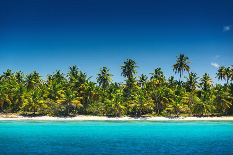 "drxgonfly: "" Palm trees on the tropical beach, Saona Island, Dominican Republic (by Valentin Valkov) """