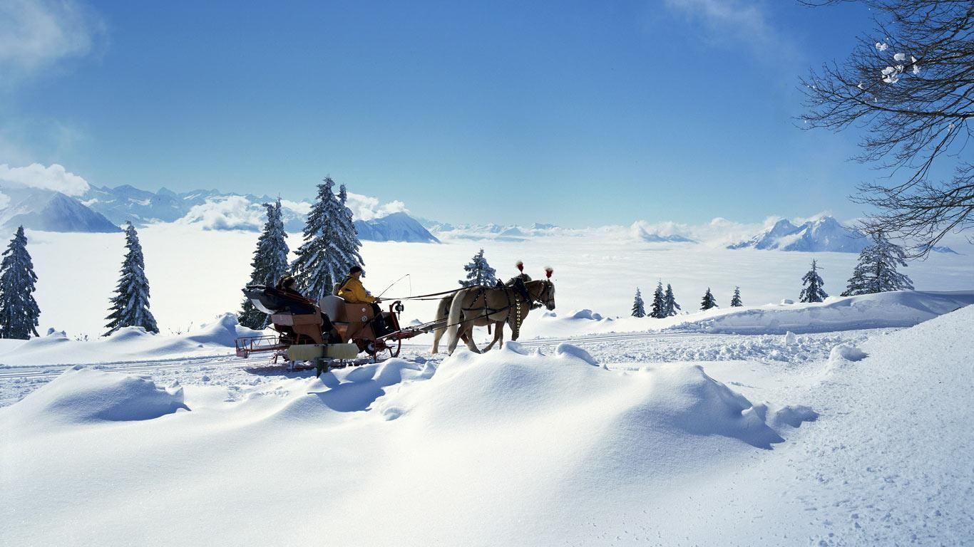 christmas sleigh horses 1920x1080 wallpaper - photo #46