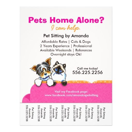 pet sitting flyer template