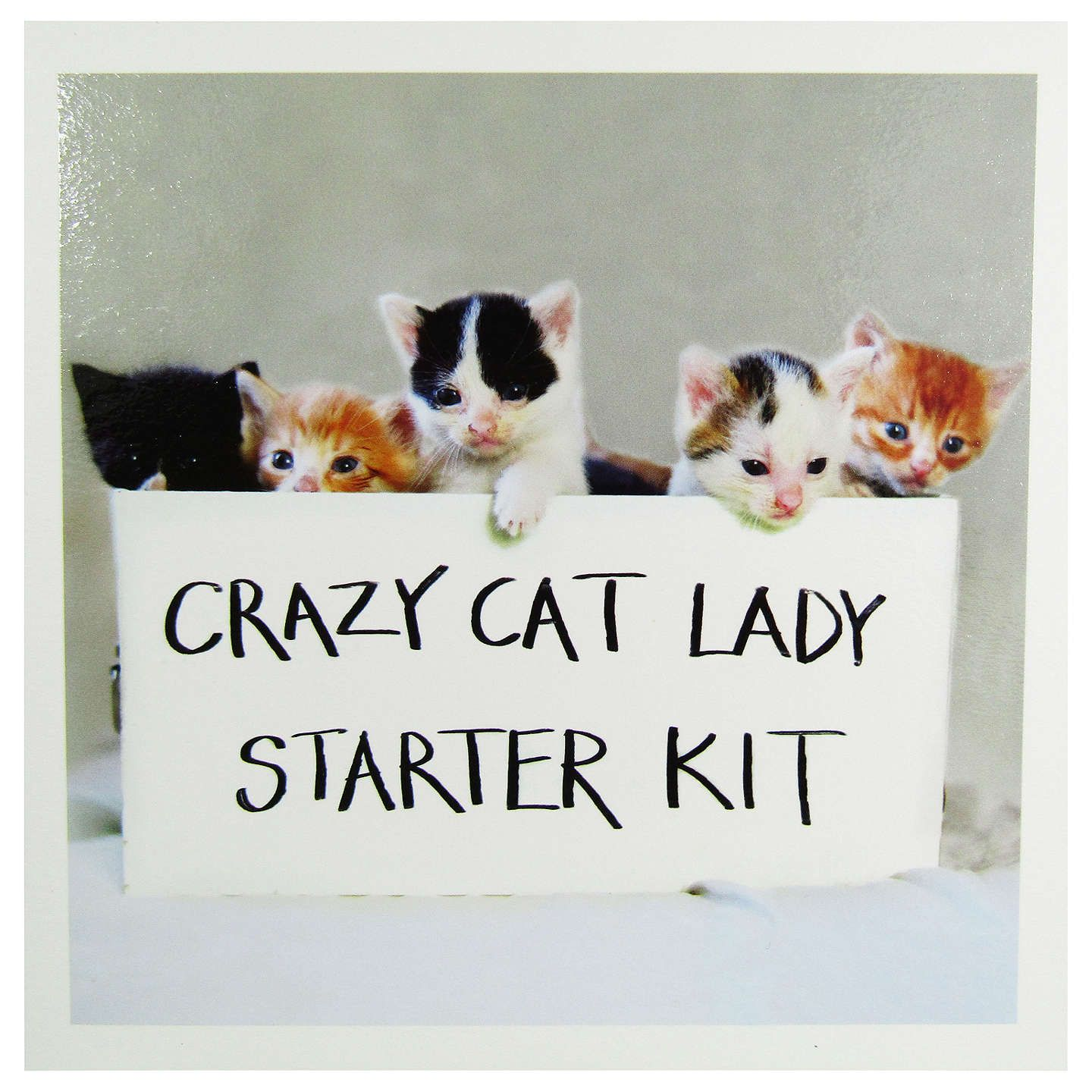 Woodmansterne Crazy Cat Lady Greeting Card Crazy Cat Lady Cat