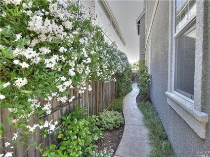 What do do for a pretty but narrow side yard | Side yard ... on Narrow Side Yard Landscaping id=23346