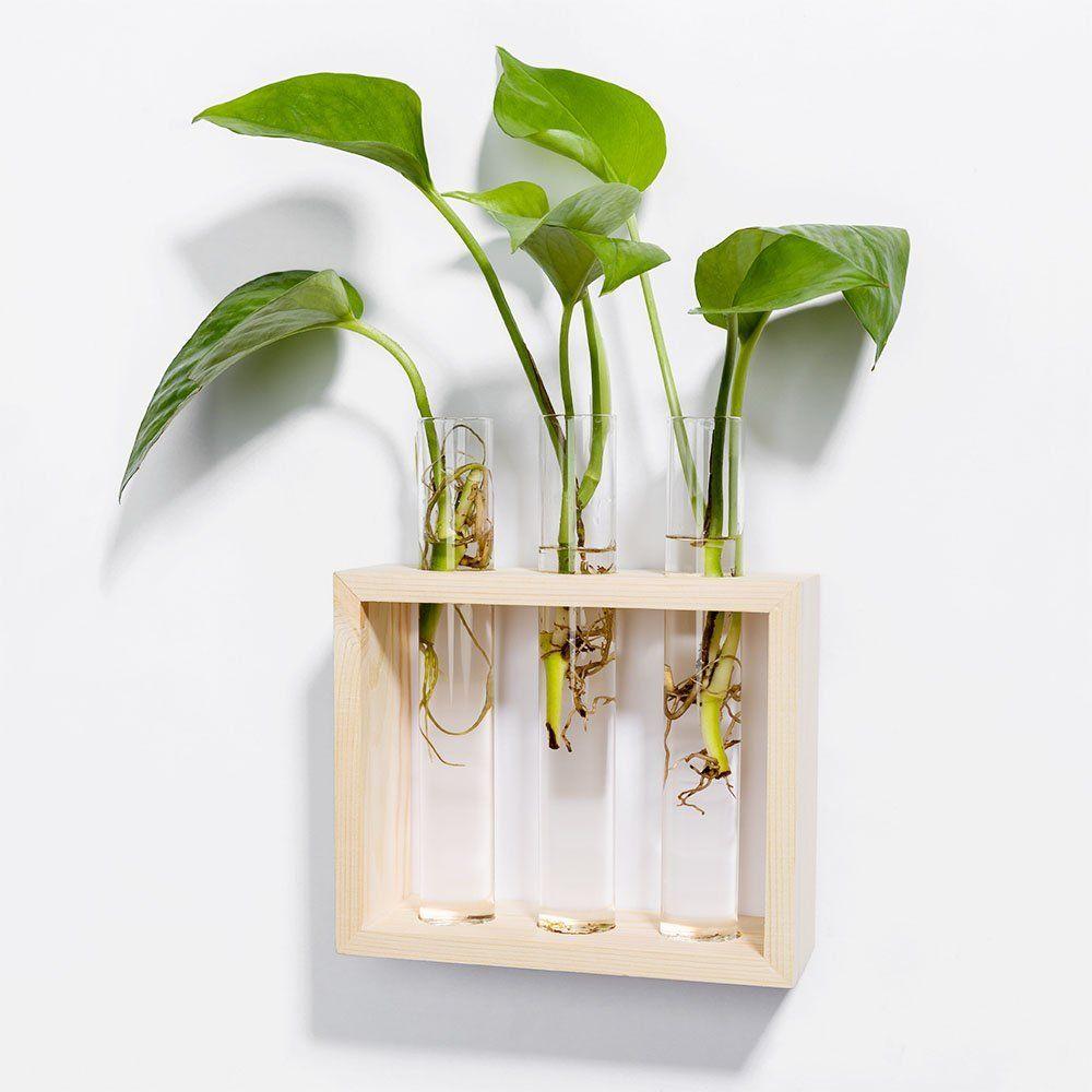 pot murale pour plante affordable pot mural pour plante interieur telepoints with pot murale. Black Bedroom Furniture Sets. Home Design Ideas