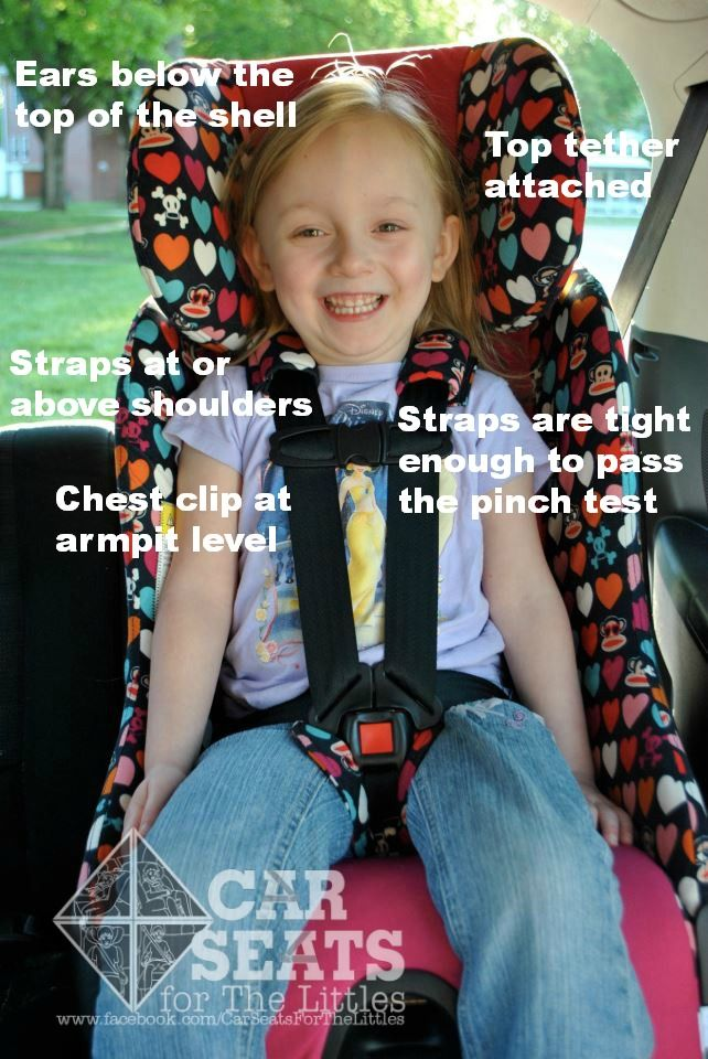 Forward facing car seat safety! www.catsforthelittles.org ...