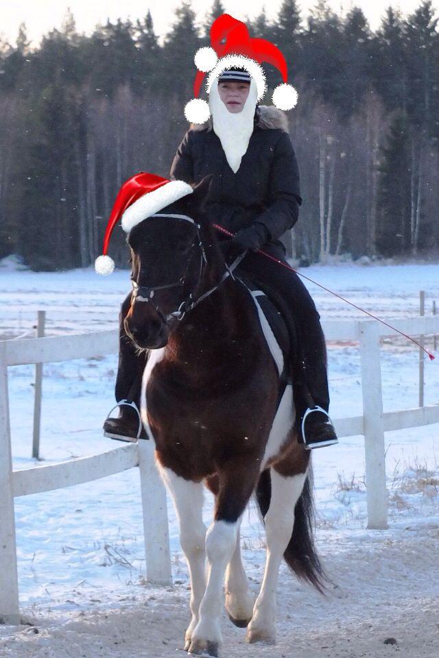 Hyvää joulua 2014!