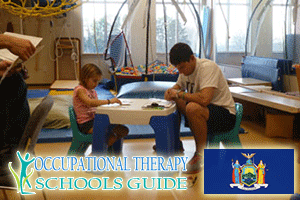 Top Occupational Therapy Schools in New York | NY ...
