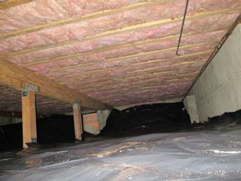 A standard Cleanout of a Crawlspace done by us  Seattle's