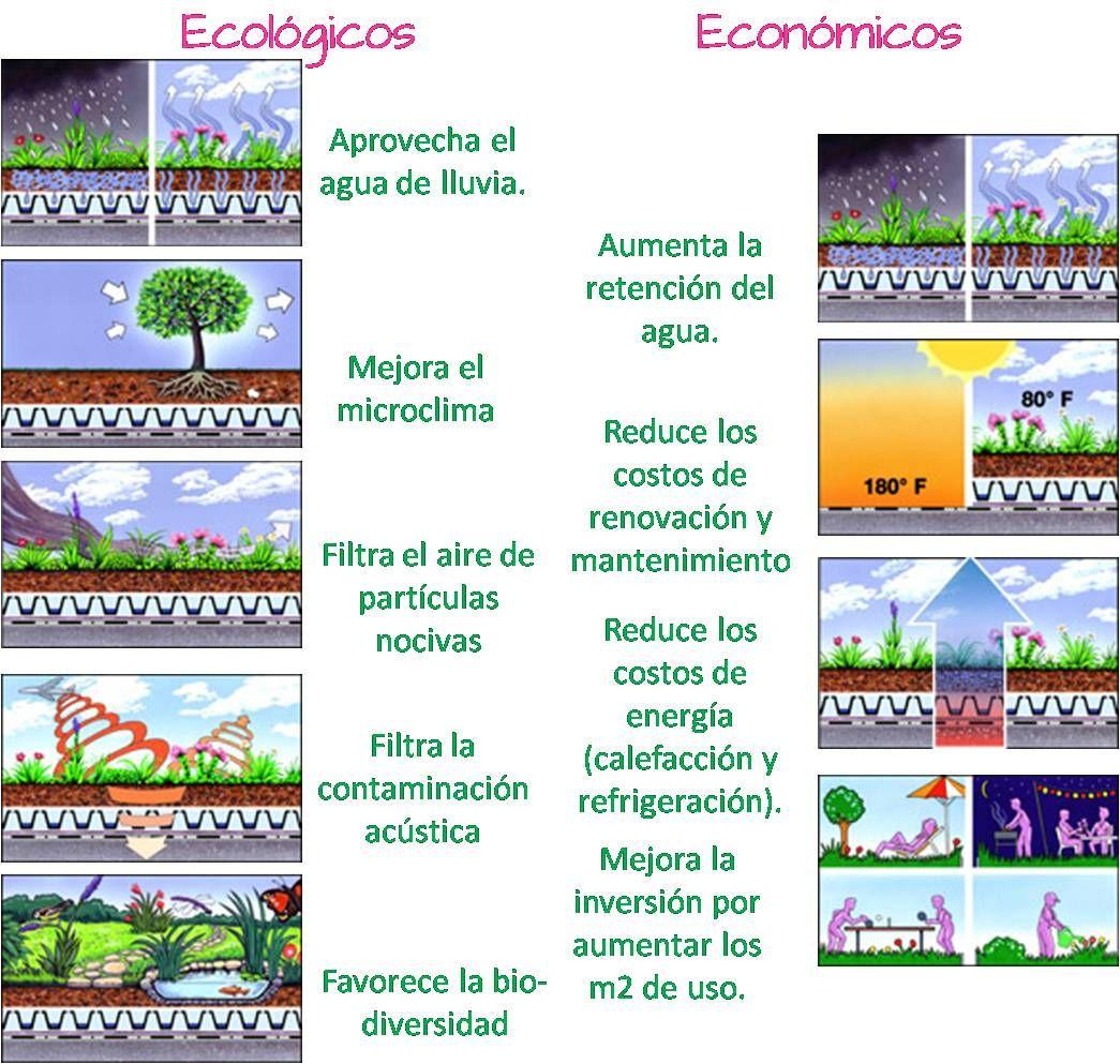 Techos Verdes Eo House Techos Verdes Fachada Verde Verde