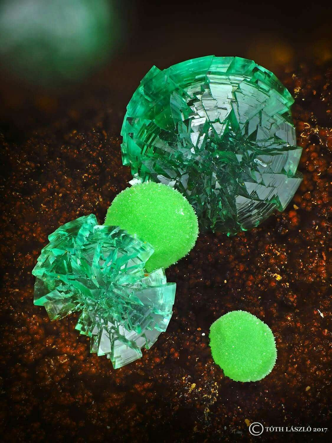 Back to my friend Vasilis Stergiou , who collected this beauty. Conichalcite with cuprian adamite from Kamariza ( Lavrio; Greece ). FOV 1,6mm. Photo credit: László Toth ©