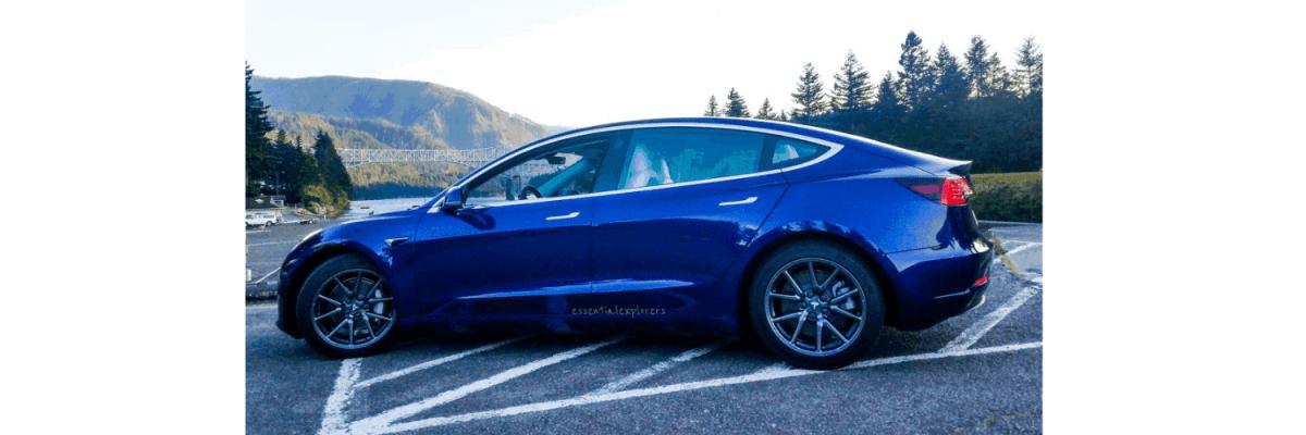 Tesla Model 3 | Buy a tesla, Car car, Electronic stability ...