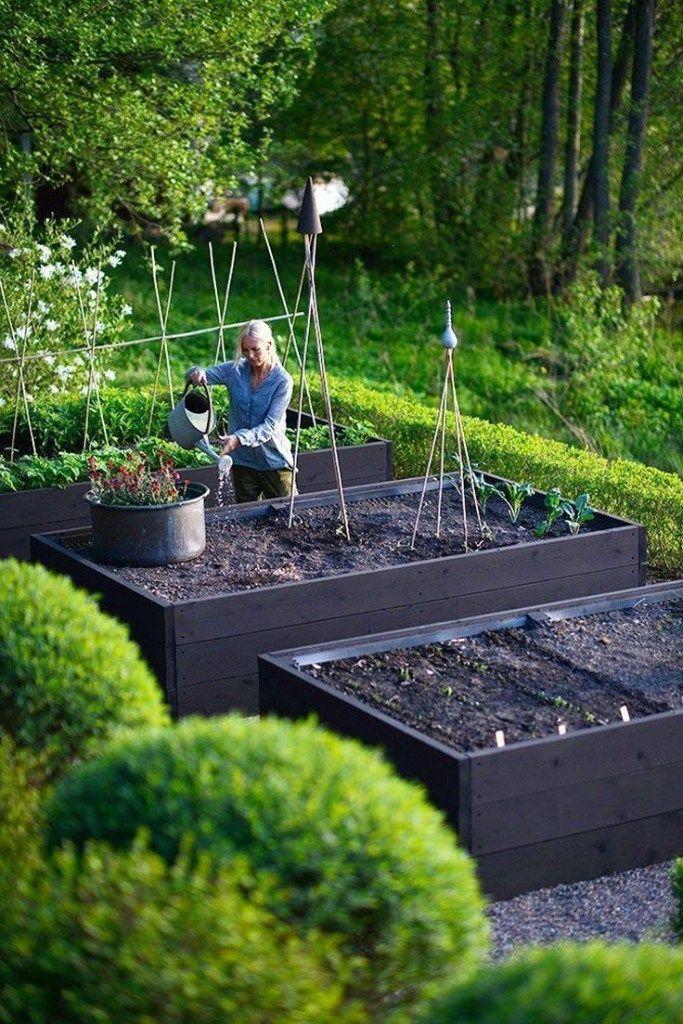 Photo of 56 #Gemüse #Garten #Design #Ideen #Für #Anfänger # – Garten