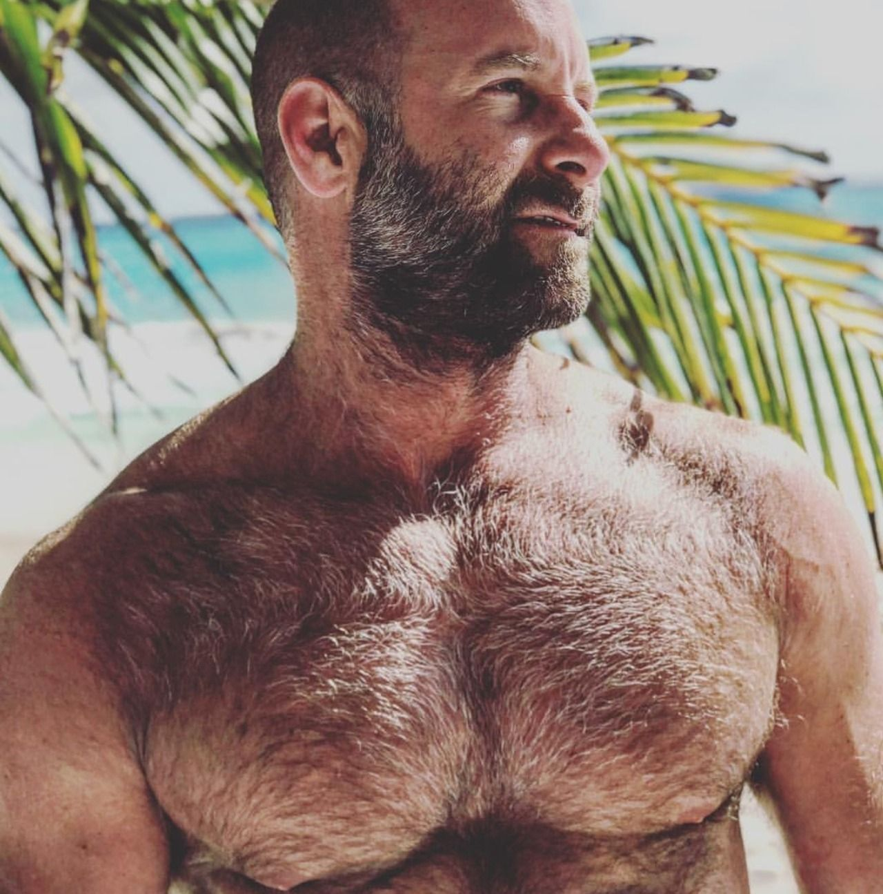 Bear Gay Maduros beach bod