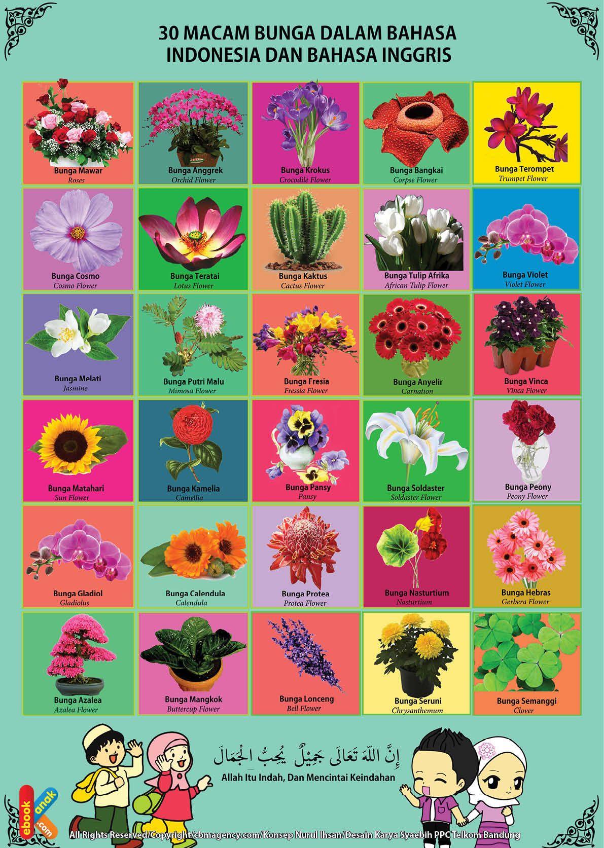 Poster Belajar Mengenal 30 Bunga 2 Bahasa Di 2020 Poster Bahasa Belajar