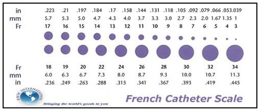 French Catheter Size Chart