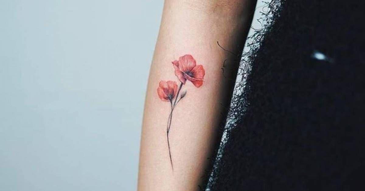 artista tatuador nando tags estilos ilustraci n naturaleza flores amapolas partes del. Black Bedroom Furniture Sets. Home Design Ideas