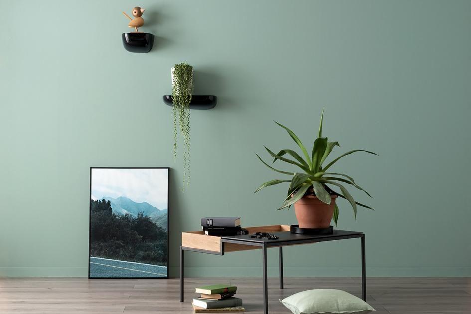 Erhabenes Agavengrun Nr 27 Bild 27 Schoner Wohnen Wandfarbe Schoner Wohnen Wohnen