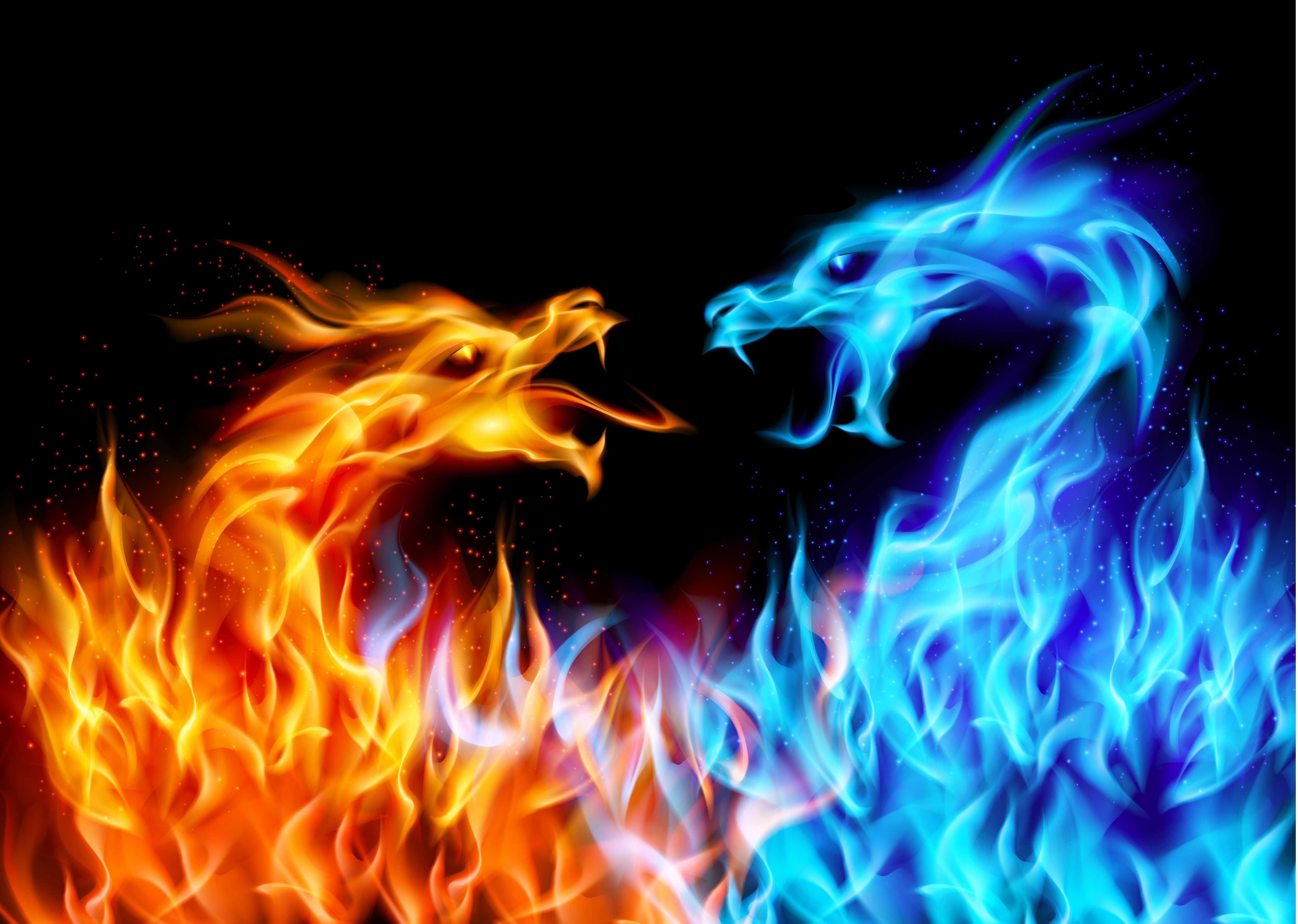 Red And Blue Dragon Fire Digital Wallpaper Dragon 5k Wallpaper Hdwallpaper Desktop Dragon Illustration Fire Dragon Fiery Dragon