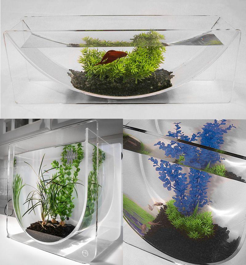 The betta bowl and aqua u modern tabletop fish tanks from for Fish tank bowl