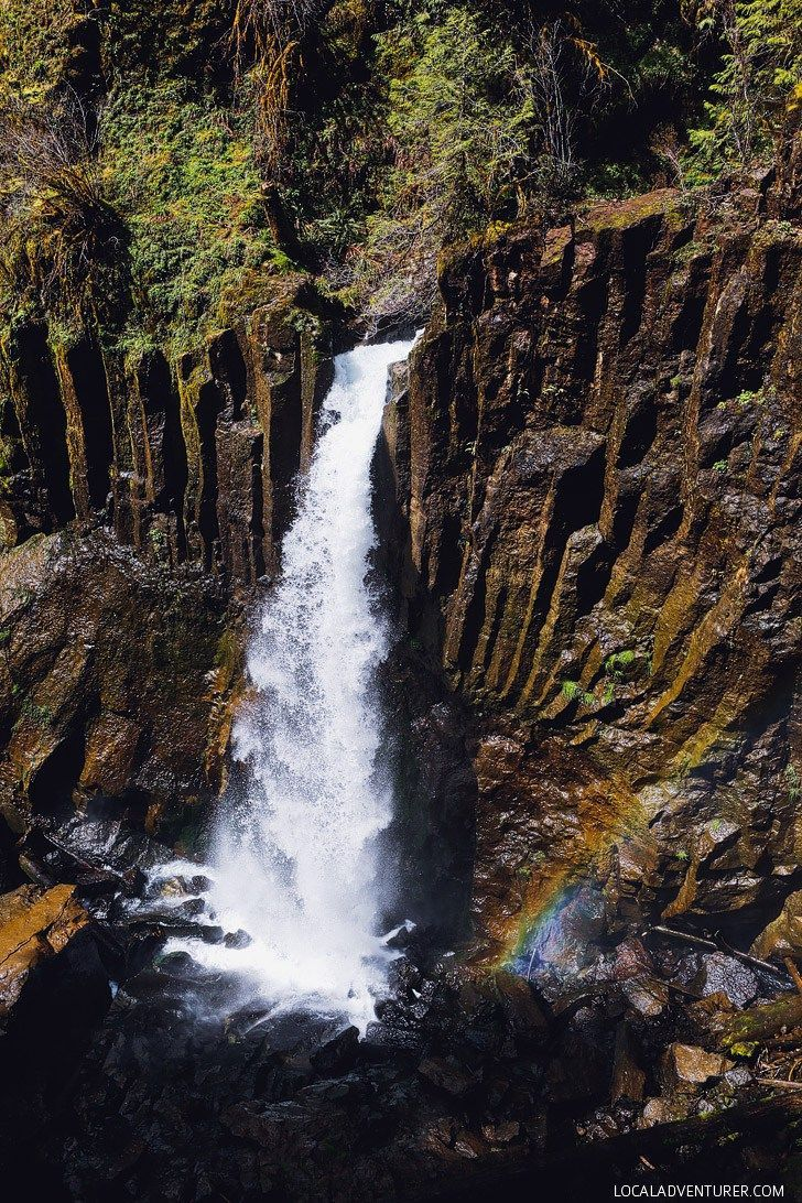 Drift Creek Falls Hike Lincoln City Oregon Coast Local Adventurer Oregon Coast Oregon Travel Lincoln City Oregon