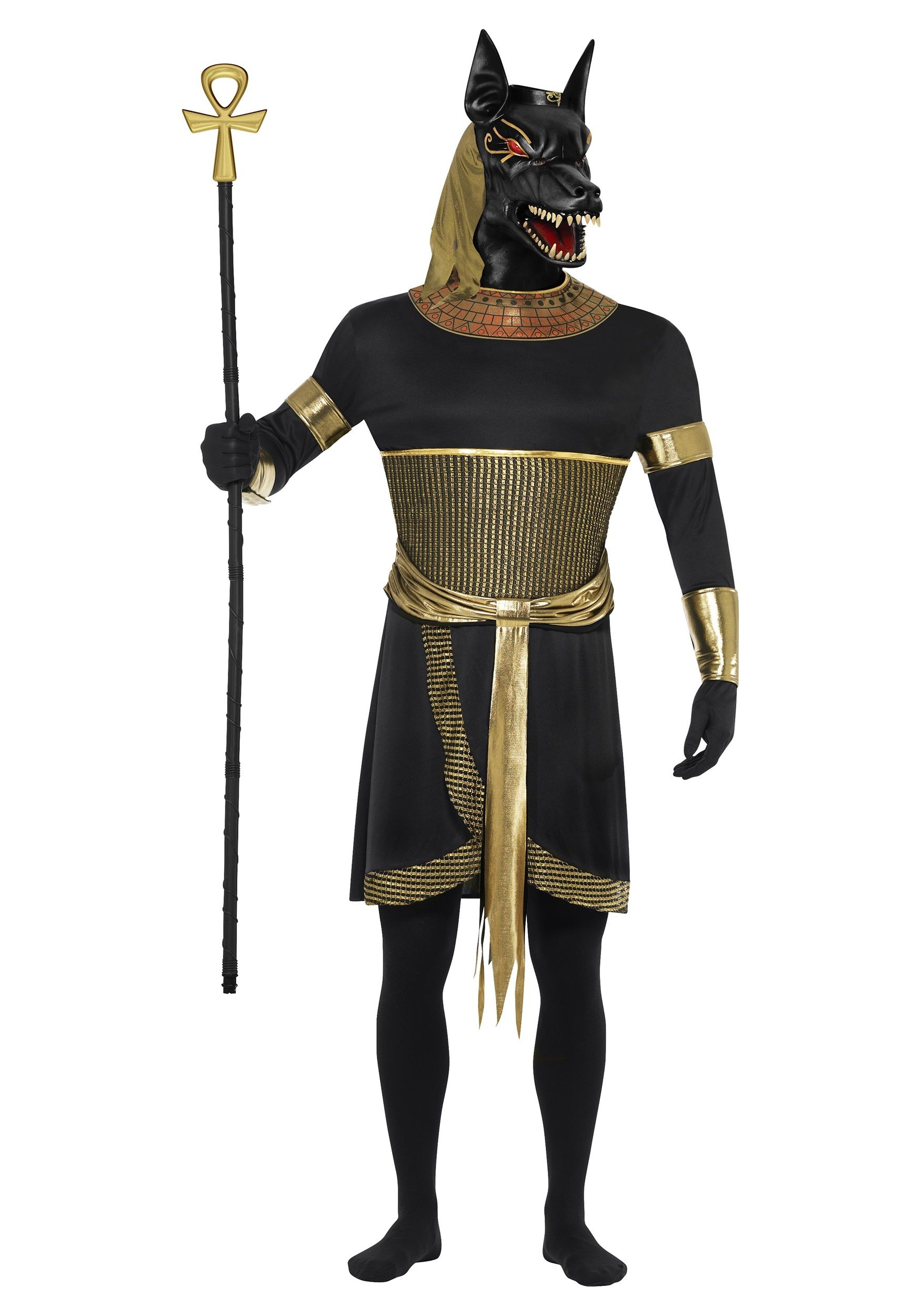 Men's Anubis the Jackal Costume | Costumes, Halloween costumes and ...